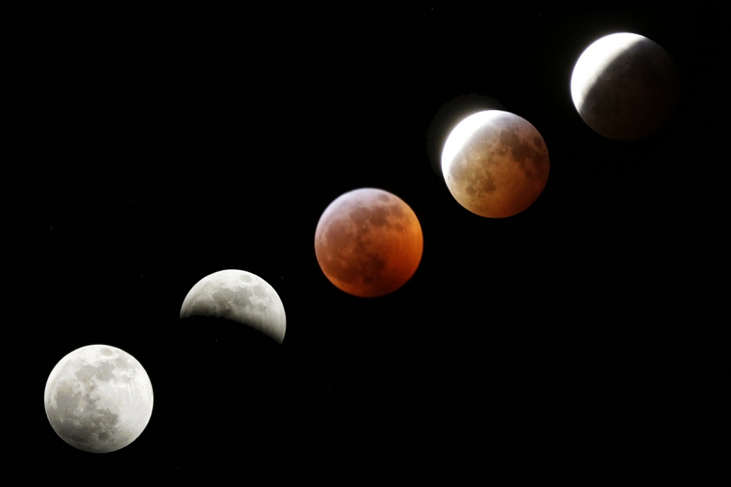 Lunar eclipse composite by Tim Barnwell