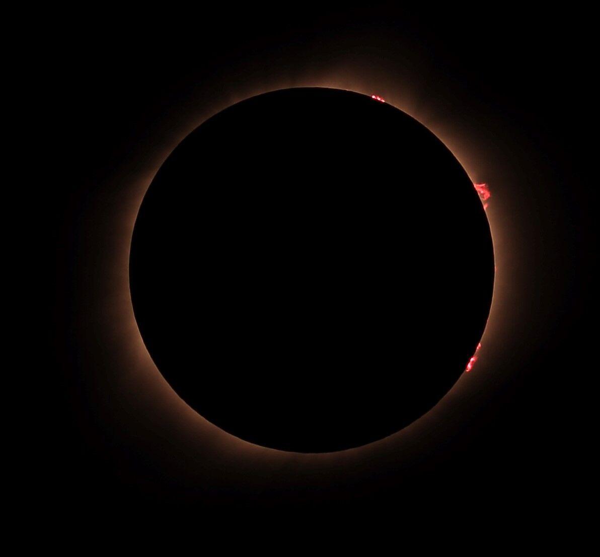 Dennis Wilde Total Solar Eclipse prominences