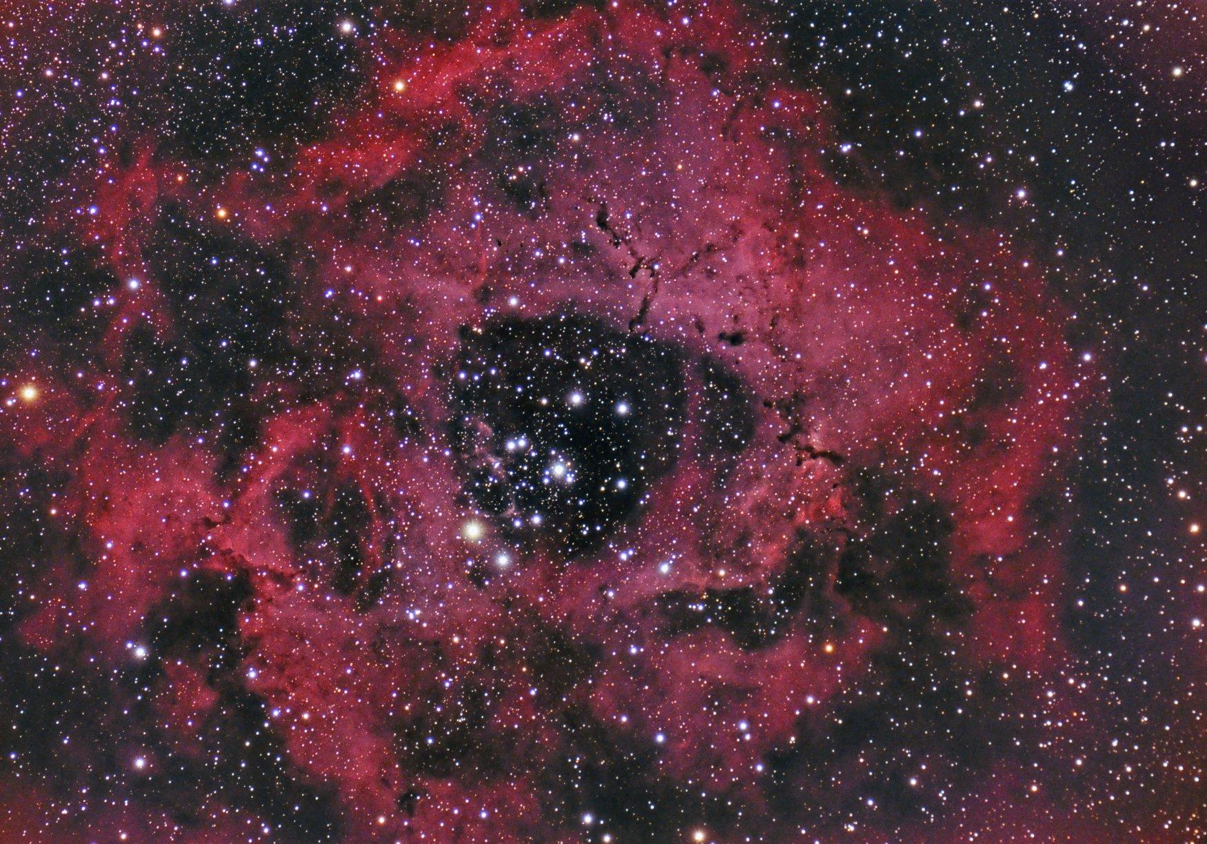 Randy Flynn Rosette Nebula