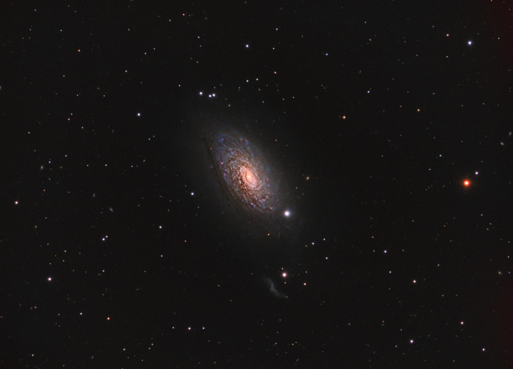 M63 Spiral galaxy
