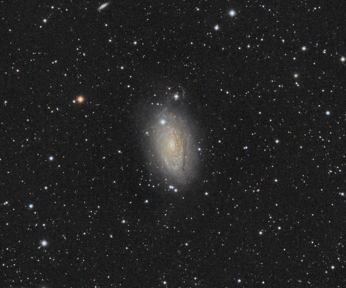 Sunflower Galaxy (M63)