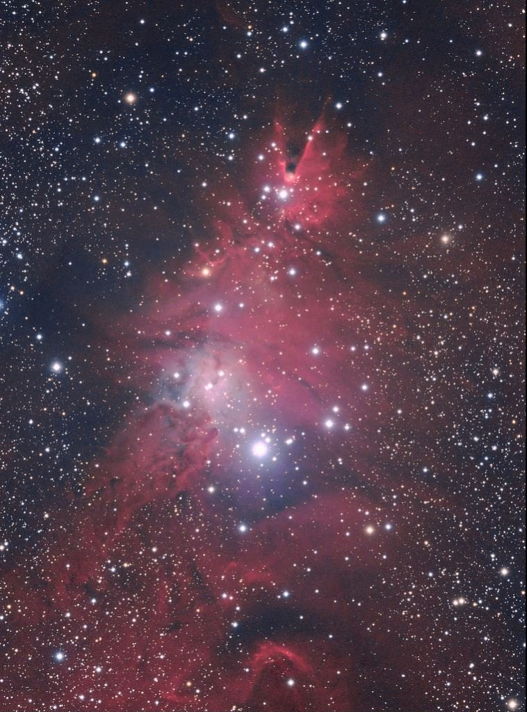 Knox Worde Christmas Tree nebula