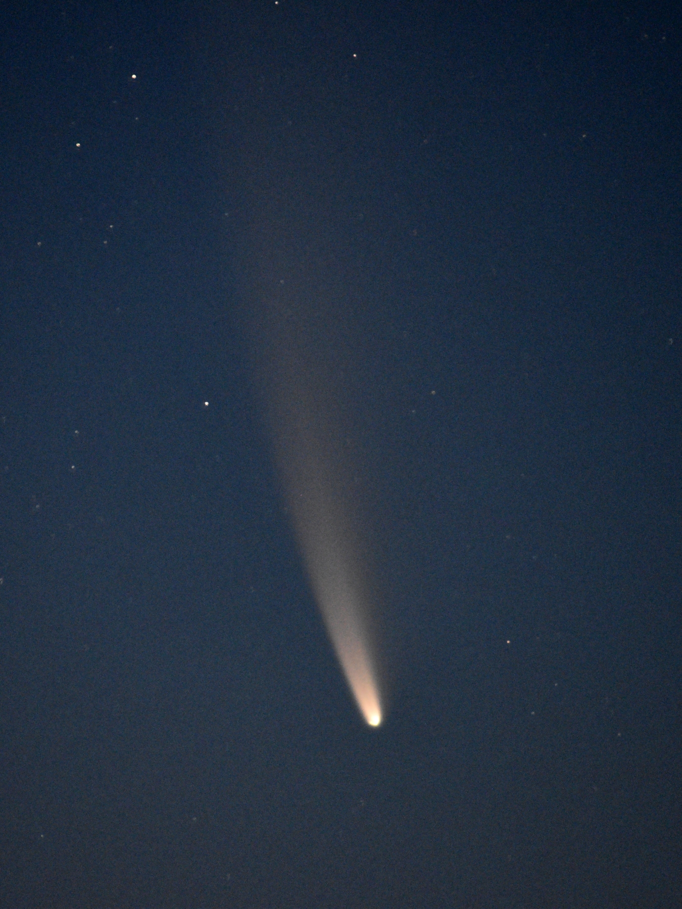 Jerry Sherman Comet NEOWISE